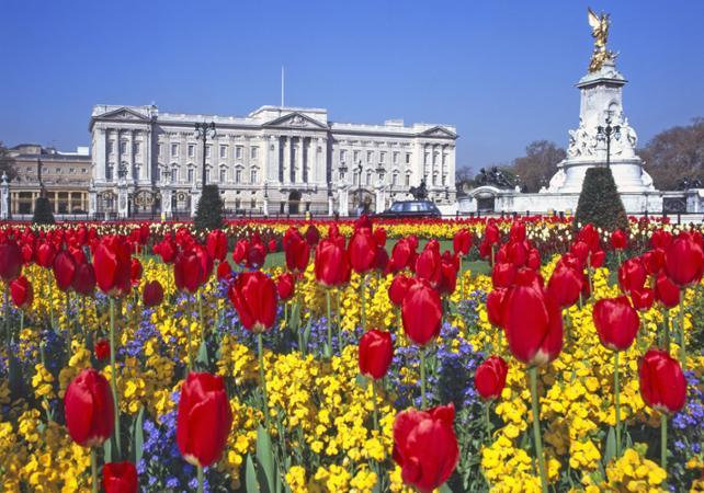 Photo Buckingham Palace - Londres