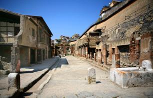 Visit to the archaeological site of Herculaneum