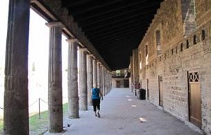 Visit the site of Pompeii and wine tasting