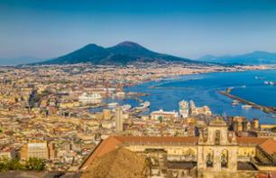 Boat trip to the ruins of Pompeii and Vesuvius National Park - round trip from hotel in Sorrento