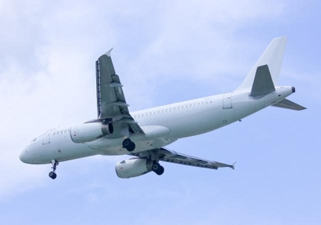 Transfert privé écologique entre l'aéroport de Singapour et le quartier d'affaires - Singapour -