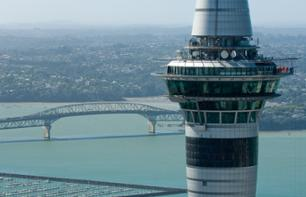 Auckland Sky Tower and guided tour of the city
