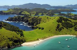 Excursion and cruise in the Bay of Islands