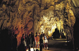 Excursion to Rotorua with Waitomo Cave visit - departure from Auckland