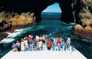 2 day / 1 night excursion in the Bay of Islands