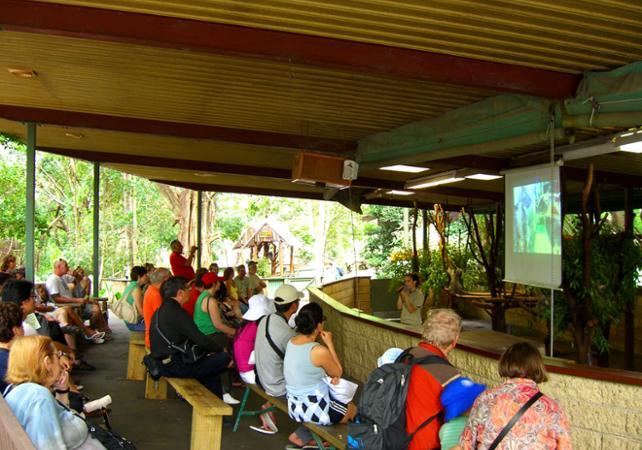Entrée au Lone Pine Koala Sanctuary & Observatoire du Mt Coot Tha image 3