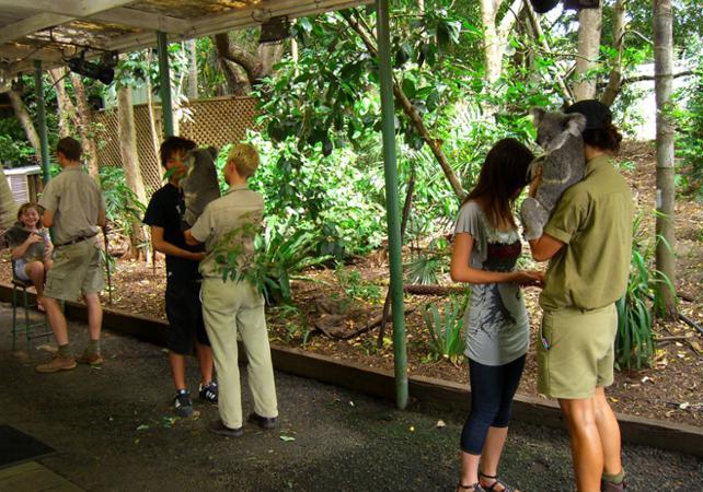 Entrée au Lone Pine Koala Sanctuary & Observatoire du Mt Coot Tha image 1