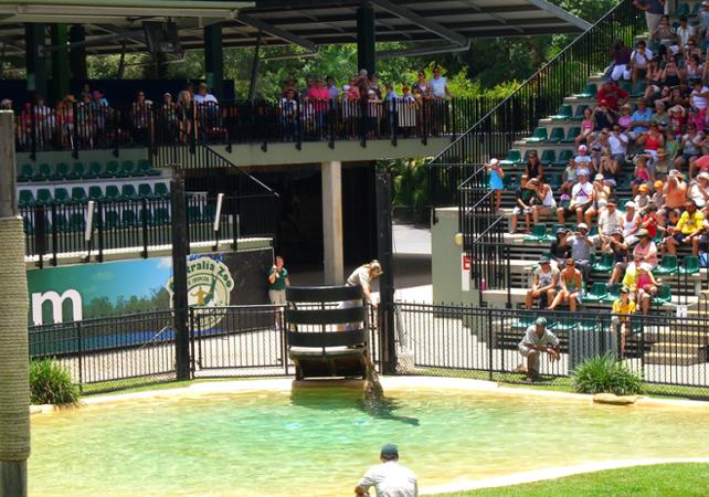 Visite du Zoo d'Australie – Au départ de Brisbane ou Gold Coast image 3