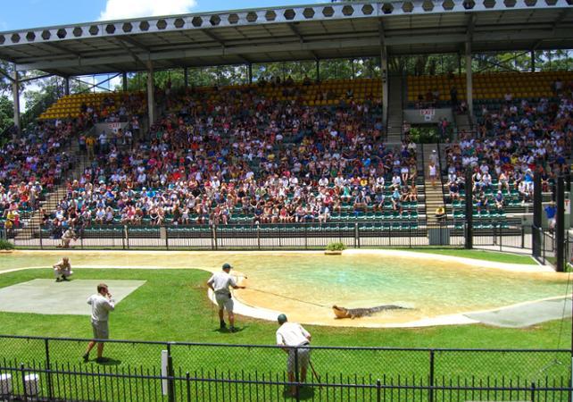 Visite du Zoo d'Australie – Au départ de Brisbane ou Gold Coast image 7