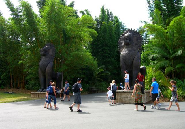 Visite du Zoo d'Australie – Au départ de Brisbane ou Gold Coast image 9