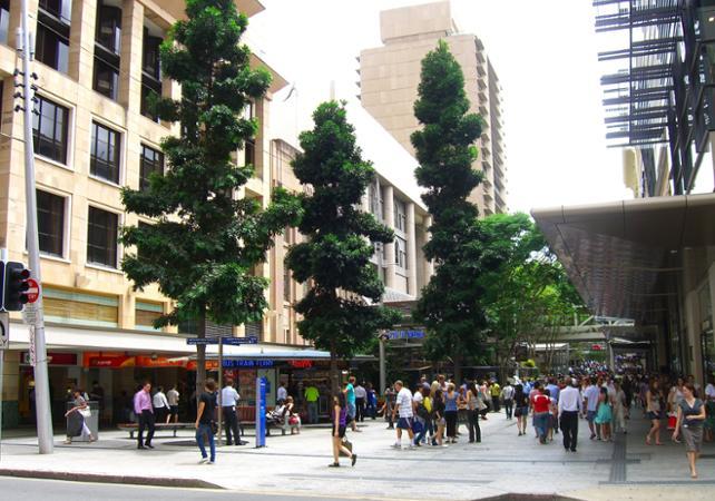 Tour de Brisbane avec croisière promenade & billet pour la grande roue image 8