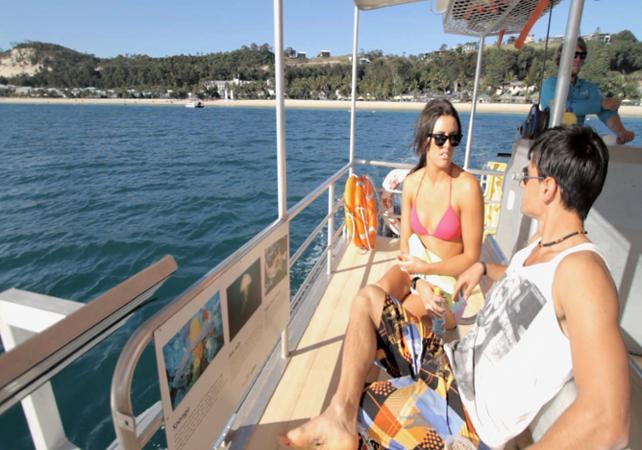Excursion d'une journée sur Moreton Island & rencontre avec les dauphins sauvages en option – Au départ de Brisbane image 2