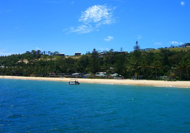 Excursion d'une journée sur Moreton Island & rencontre avec les dauphins sauvages en option – Au départ de Brisbane image 8