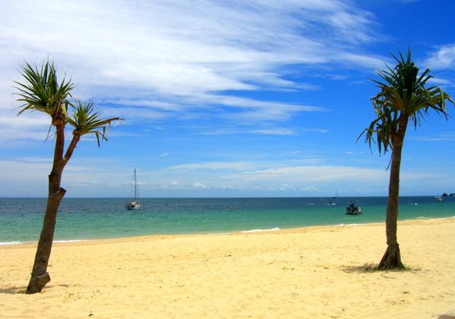 Excursion d'une journée sur Moreton Island & rencontre avec les dauphins sauvages en option – Au départ de Brisbane image 11