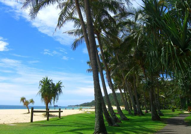 Excursion d'une journée sur Moreton Island & rencontre avec les dauphins sauvages en option – Au départ de Brisbane image 3
