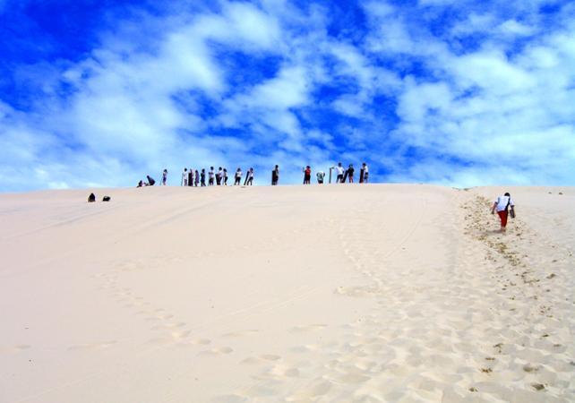 Excursion d'une journée sur Moreton Island & rencontre avec les dauphins sauvages en option – Au départ de Brisbane image 16