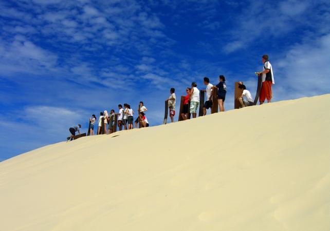 Excursion d'une journée sur Moreton Island & rencontre avec les dauphins sauvages en option – Au départ de Brisbane image 4