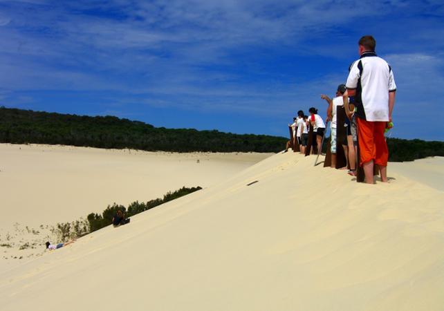Excursion d'une journée sur Moreton Island & rencontre avec les dauphins sauvages en option – Au départ de Brisbane image 15