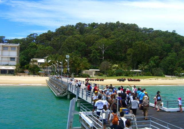 Croisière d'observation des baleines & dauphins sauvages à Moreton Island – Au départ de Brisbane image 5