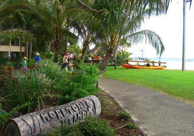 Croisière d'observation des baleines & dauphins sauvages à Moreton Island – Au départ de Brisbane image 9