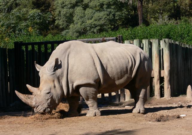 Journée au Zoo Temaikèn image 3