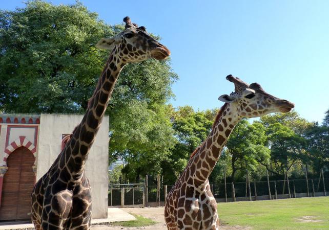 Journée au Zoo Temaikèn image 1
