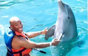Swim with Dolphins at Isla Mujeres - Depart from Cancun