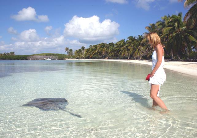 Photo Croisière jusqu'à l'île Contoy et plongée avec tuba au départ de Cancun