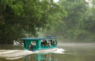 San José Rainforest Adventure: cruise along the Sarapiqui river and follow a tree surfing course