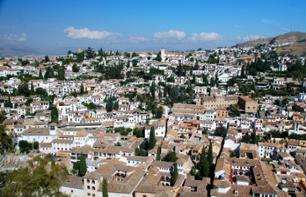 Private walking tour of the historic centre of Granada and the Albaicin