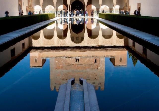 Visite privée à pied du palais de l'Alhambra à Grenade - Grenade -
