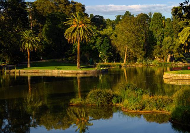 Tour guidé de Melbourne et de ses environs image 1