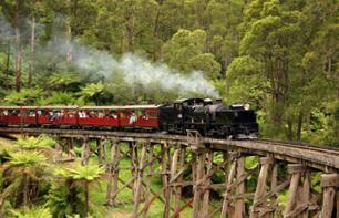 Traditional Australian Tour: Steam Train, Wine-Tasting and Meet Koalas & Kangaroos