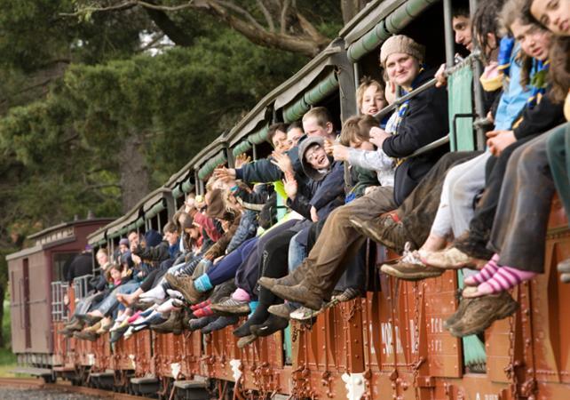 Tour typiquement australien : traversée en train à vapeur, dégustation de vins et rencontre des koalas et des kangourous image 2