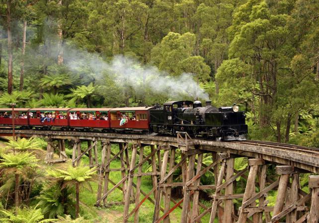 Tour typiquement australien : traversée en train à vapeur, dégustation de vins et rencontre des koalas et des kangourous image 1