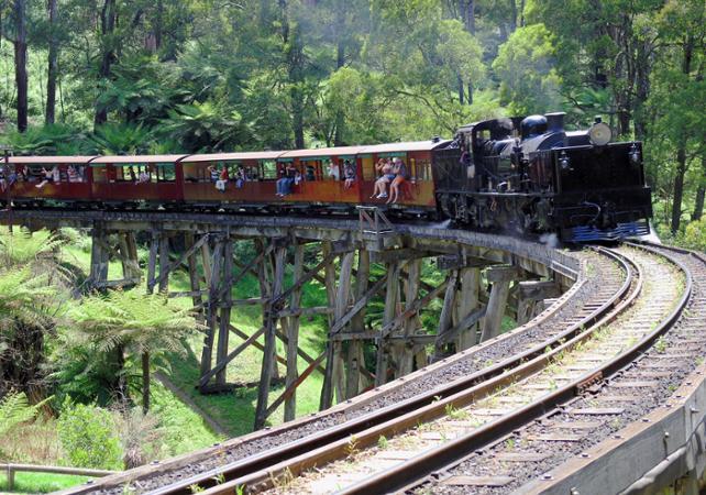 Tour typiquement australien : traversée en train à vapeur, dégustation de vins et rencontre des koalas et des kangourous image 3