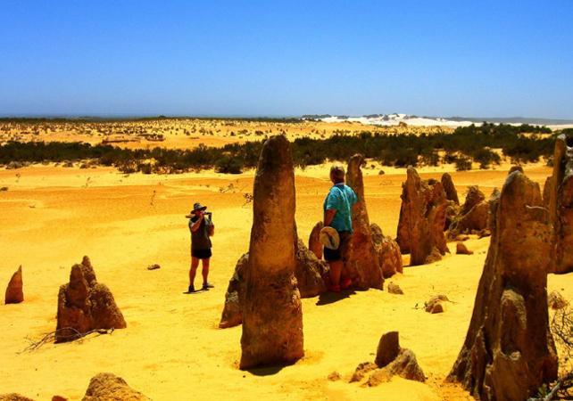 Excursion jusqu'au désert des Pinnacles et visite guidée de New Norcia – Au départ de Perth image 1