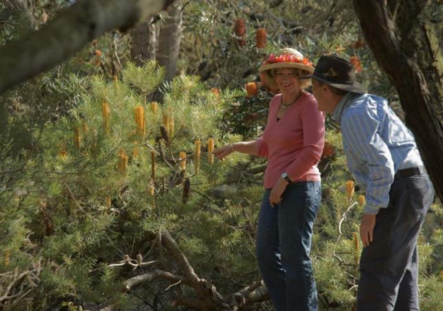 Visite guidée sur la thème des fleurs d'Australie Occidentale image 5