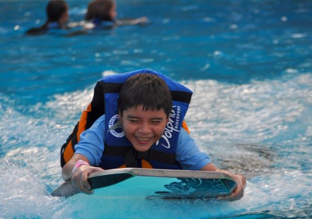 Nage avec les dauphins : Billets pour le parc d'attractions Six Flags Mexico et rencontre avec les dauphins