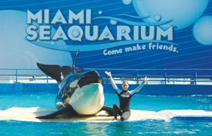 Skip-the-Line Tickets to Miami Seaquarium