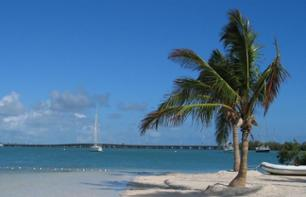 Trip to Key West with Aquatic Activity of Your Choice – Departing from Miami