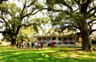 Guided Plantation Tour: Laura, Oak Alley or Whitney (Choice of 2) – Departing from New Orleans