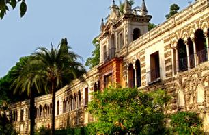 Guided Walking Tour of Central Seville