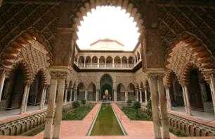 Historic Walking and Bus Tour of Seville
