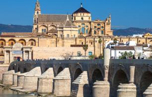 Excursion to Cordoba and Visit to its Main Monuments – Leaving from Seville
