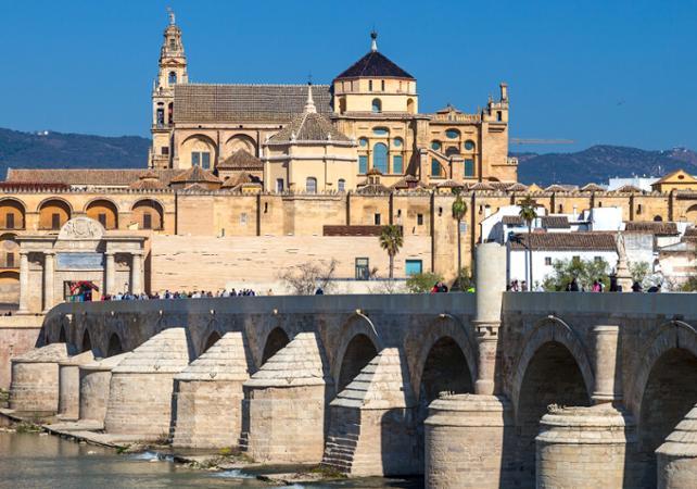 Excursion à Cordoue et visite de ses principaux monuments - au départ de Séville - Séville -