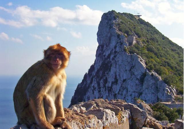 Excursion à Gibraltar – au départ de Séville - Séville -