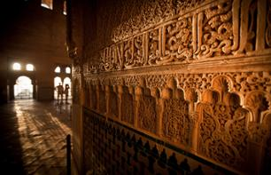 Guided Walking Tour of the Alhambra – Without Transport