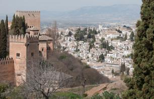 Guided Walking Tour of the Alhambra, Flamenco Show and Tour of the Albaicin by Night