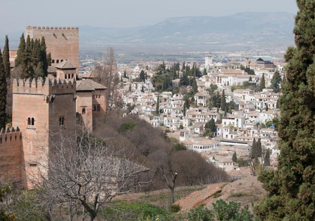 Photo Visite guidée à pied de l'Alhambra, spectacle de Flamenco et tour nocturne de l'Albaicin à Grenade